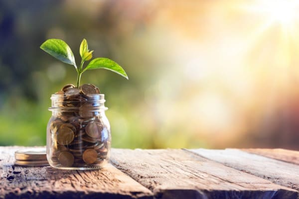 Beim Fenster sanieren wird langfristig Geld eingespart