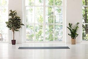 Modernes Wohnzimmer mit Bodentiefen Sprossenfenstern.
