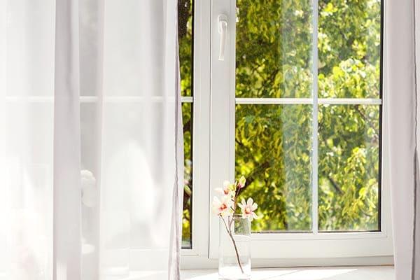 Fenster mit Gartenblick und kleiner Blume auf der Fensterbank.