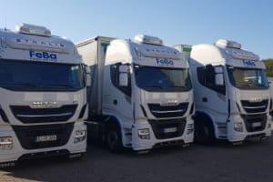 Drei LKWs, welche für den Fensterversand verwendet werden, in einer Reihe