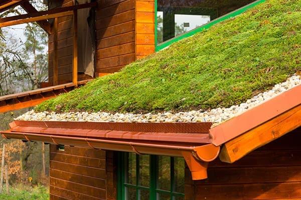 Landhaus mit grünen Fenstern