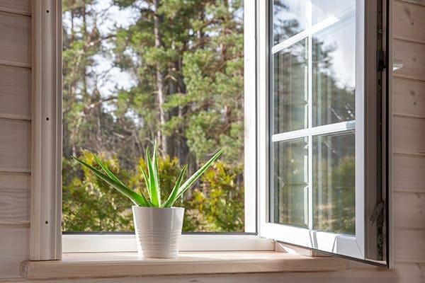 Offenes Fenster aus Kunststoff mit Pflanze auf Fensterbank.